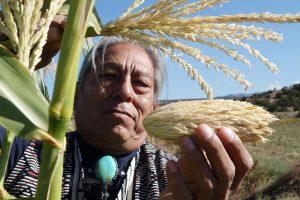 """Dokumentarfilm """"Unser Saatgut"""" (""""Seeds"""") - Pressebild: Stammesältester im Tesuque Pueblo mit 'Mutter-Mais'"""