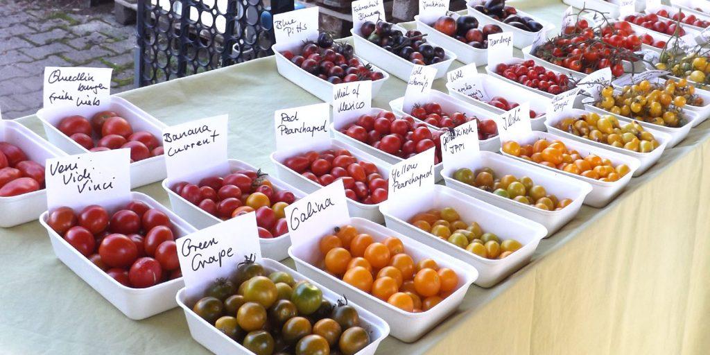 Tomatensorten zur Verkostung, Blumenschule Schongau - August 2020