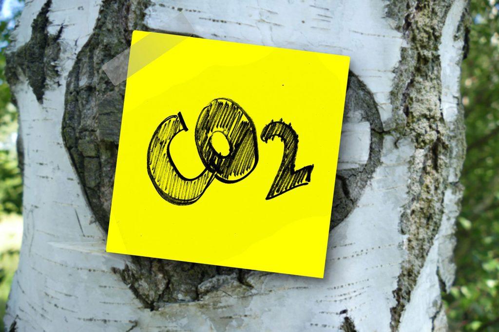 """Handgeschriebener Zettel """"CO2"""" auf Baumstamm (Image by Gerd Altmann from Pixabay)"""