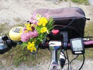 Radlenker mit Blumen (Foto: A.Back)